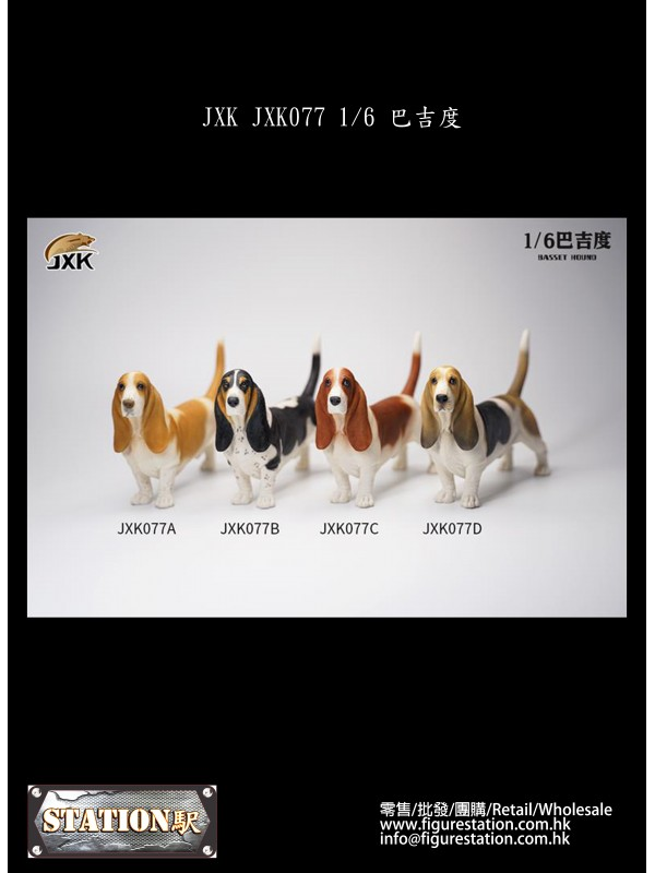 (PRE-ORDER) JXK JXK077 1/6 Basset Hound (Pre-order HKD$ 198)