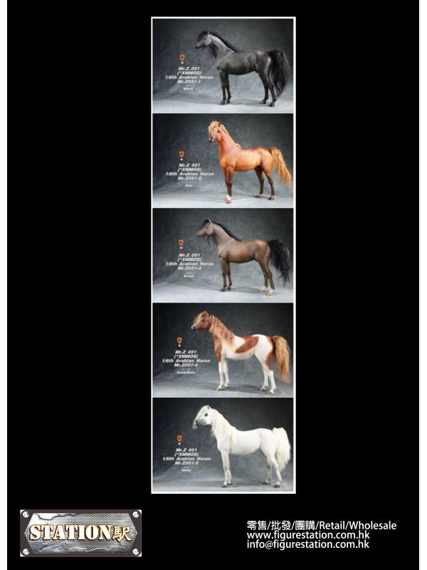 Mr.Z MRZ051-1 1/6 Arabian Horse(Only Horse)